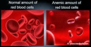 Obat Kurang Darah